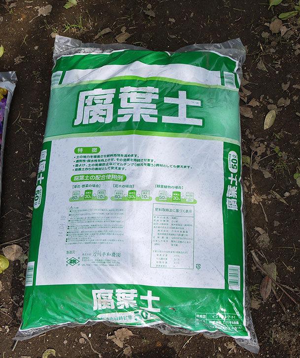土と肥料をケイヨーデイツーで買って来た3.jpg