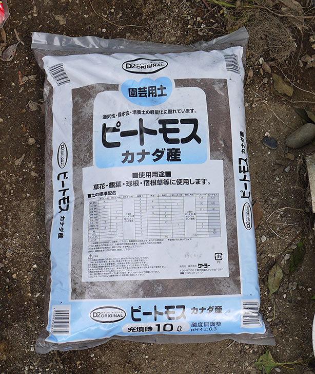 土と肥料をケイヨーデイツーで買って来た4.jpg