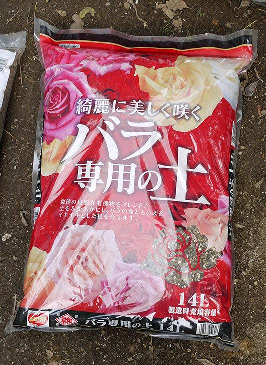土と肥料をケイヨーデイツーで買って来た5.jpg