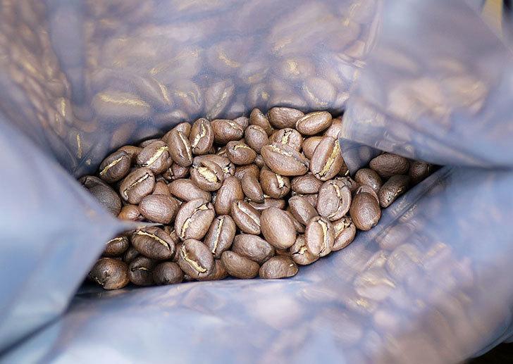 堀口珈琲のブレンド豆をもらった3.jpg