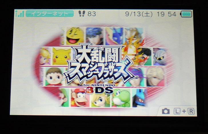 大乱闘スマッシュブラザーズ-for-ニンテンドー3DSのダウンロード版を追加で買った2.jpg