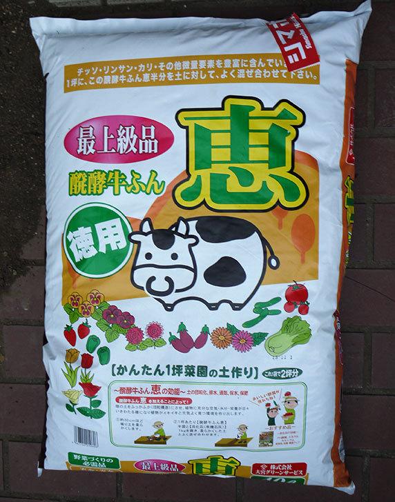 大宮グリーンサービス-発酵牛ふん-恵-40Lをホームズで買ってきた1.jpg