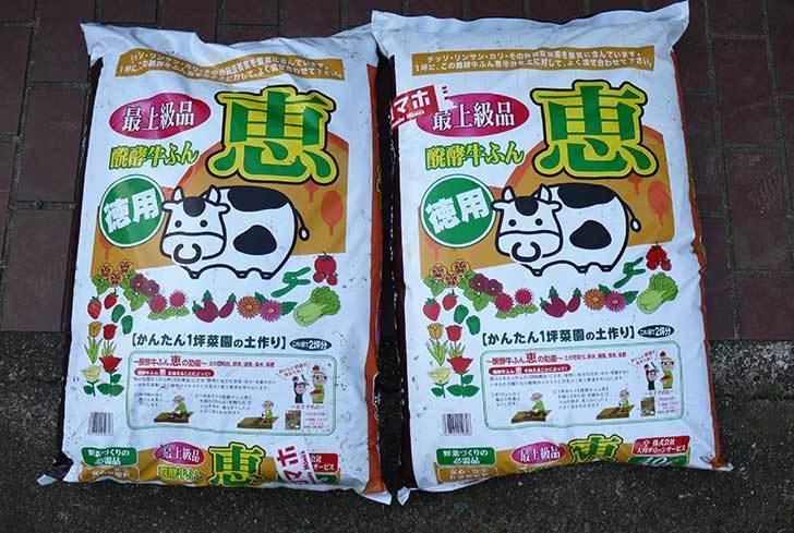 大宮グリーンサービス-醗酵牛ふん-恵-40Lを2袋、ホームズで買ってきた1.jpg