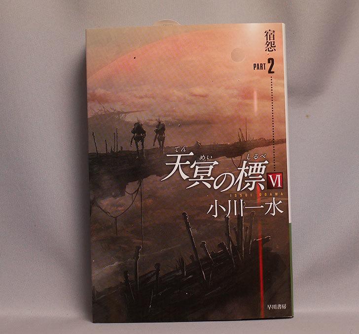天冥の標6-宿怨-PART-2-小川-一水-(著)を買った1.jpg