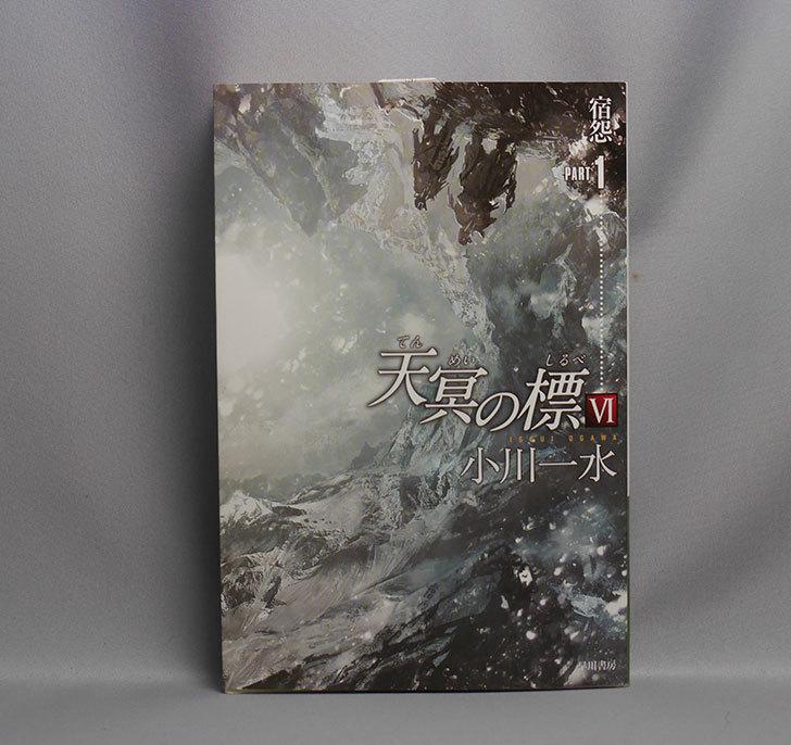 天冥の標6-宿怨-PART1-小川-一水-(著)を買った1.jpg