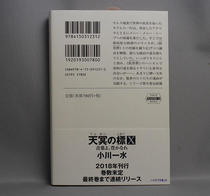 天冥の標IX-ヒトであるヒトとないヒトとPART2-小川-一水-(著)を買った2.jpg