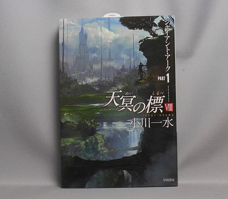 天冥の標VIII-ジャイアント・アークPART1-小川-一水-(著)を買った1.jpg