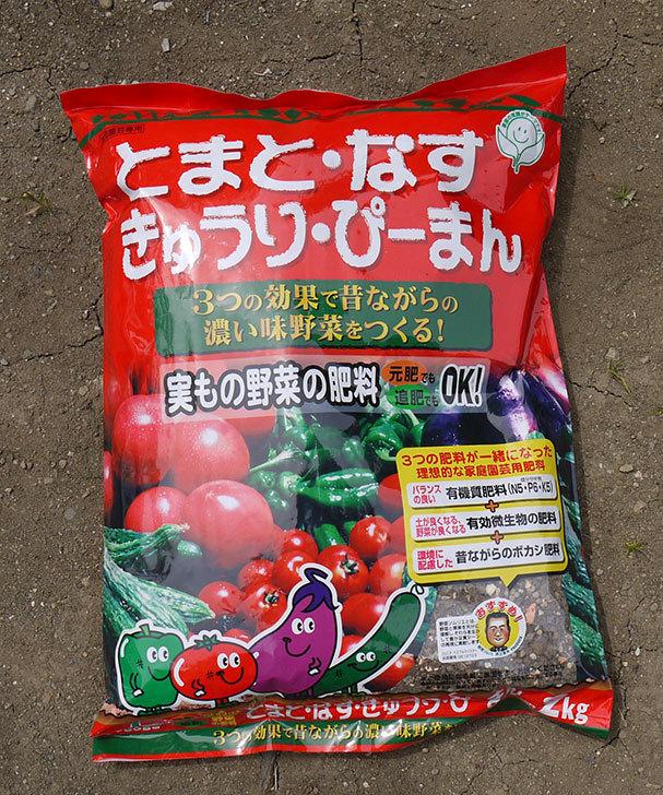 実もの野菜の肥料をホームズで買ってきた1.jpg