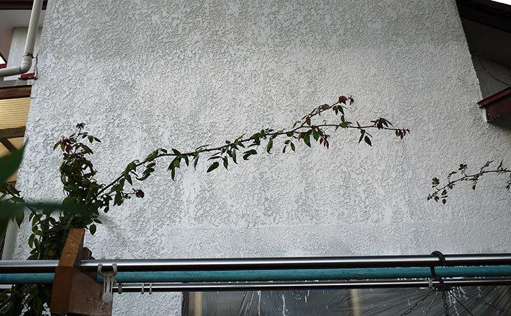 家の外壁塗装をした。2016年-1.jpg