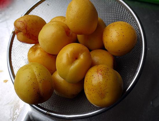 庭で収穫した梅で梅ジャムを作った1.jpg
