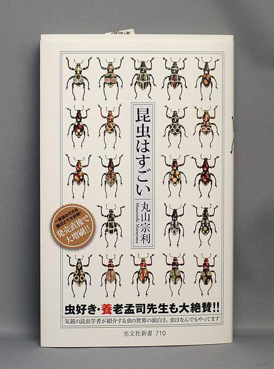 昆虫はすごい-丸山-宗利-(著)を買った1.jpg