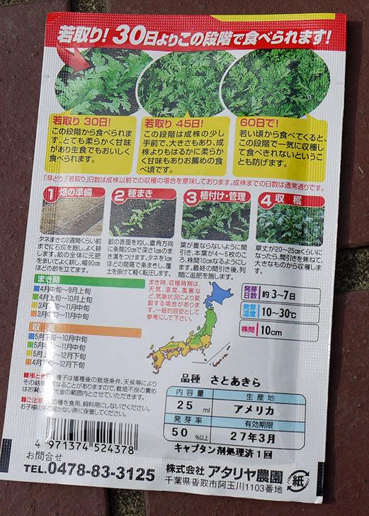 春菊の種をホームズで買ってきた2.jpg