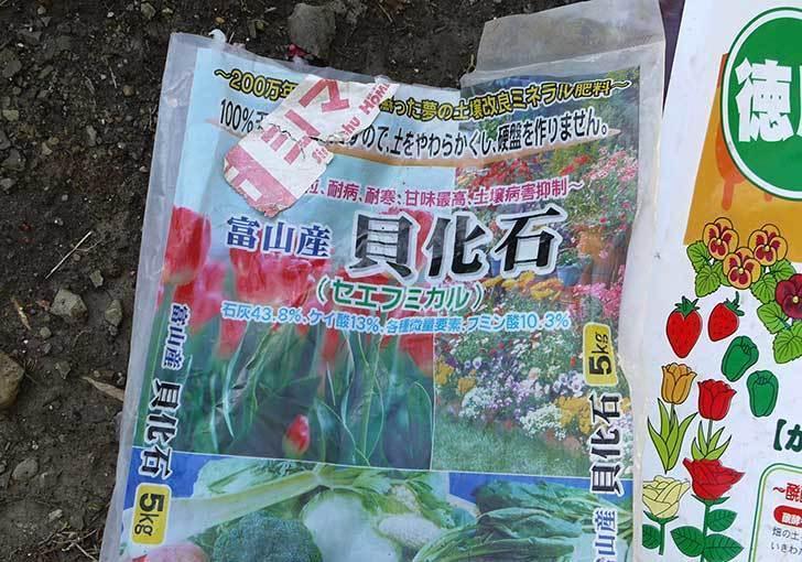 柿の木に寒肥として醗酵牛ふんを施した12.jpg