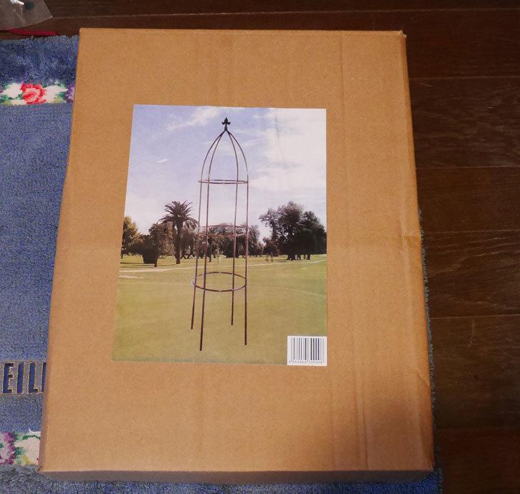 楽天で鉄製オベリスク高さ193cmを買った1.jpg
