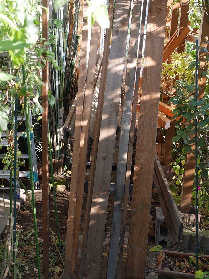 横向きに設置する板を木部保護塗料で塗装した。2020年。ツルバラ用のフェンス制作(3)-003.jpg