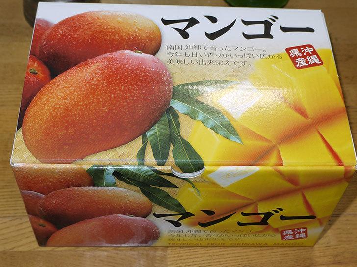 沖縄産のマンゴーを貰った3.jpg