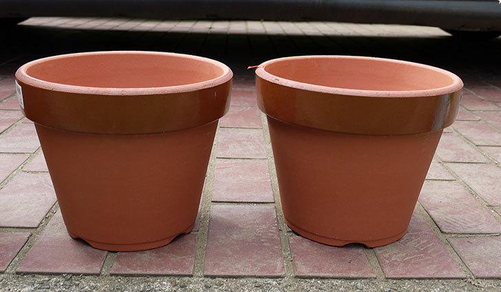 深鉢8号の植木鉢をケイヨーデイツーで買って来た1.jpg