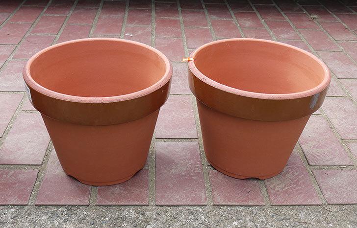 深鉢8号の植木鉢をケイヨーデイツーで買って来た2.jpg