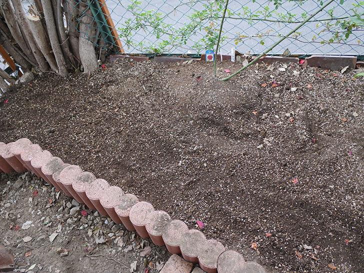 物をどかして空いたスペースに花壇を拡張した。2019年-12.jpg