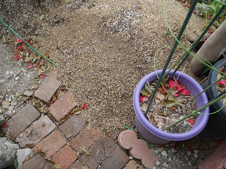 物をどかして空いたスペースに花壇を拡張した。2019年-4.jpg