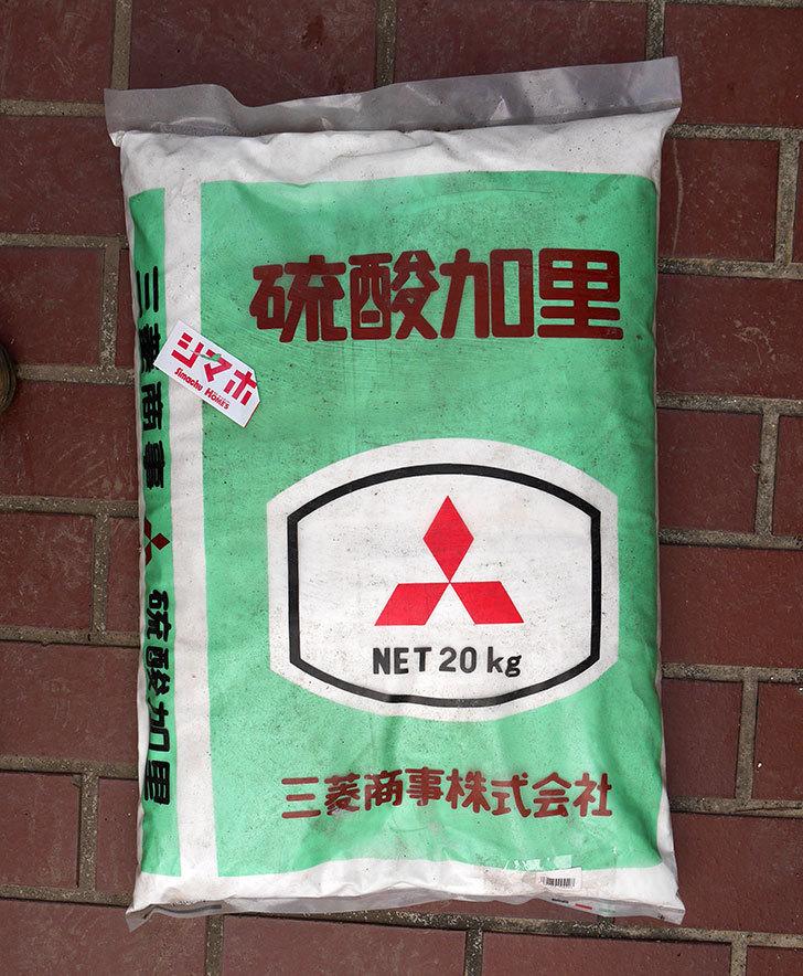 硫酸加里-20kgをホームズで買って来た1.jpg