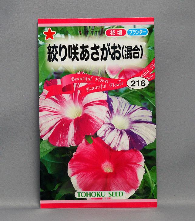 絞り咲あさがお(混合)の種をケイヨーデイツーで買って来た。2016年-1.jpg