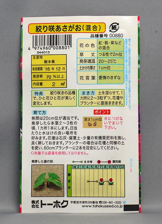 絞り咲あさがお(混合)の種をケイヨーデイツーで買って来た。2016年-2.jpg