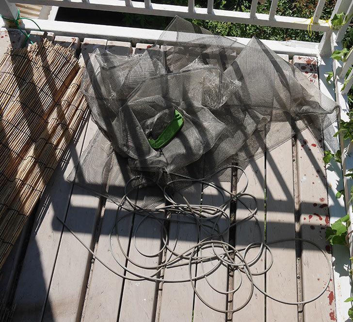 網戸が破れたの黒いネットに張り替えた3.jpg