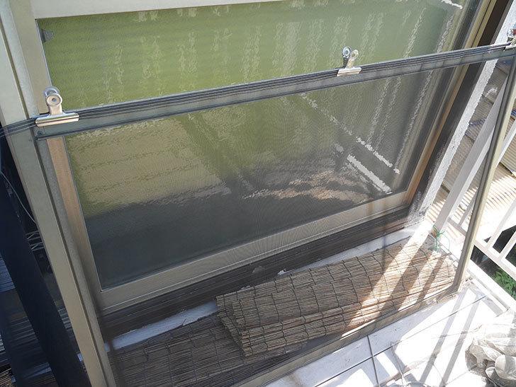 網戸が破れたの黒いネットに張り替えた5.jpg