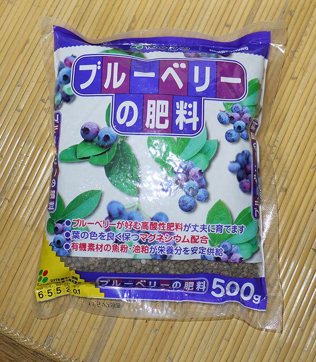 花ごころ-ブルーベリーの肥料-500gを買った1.jpg