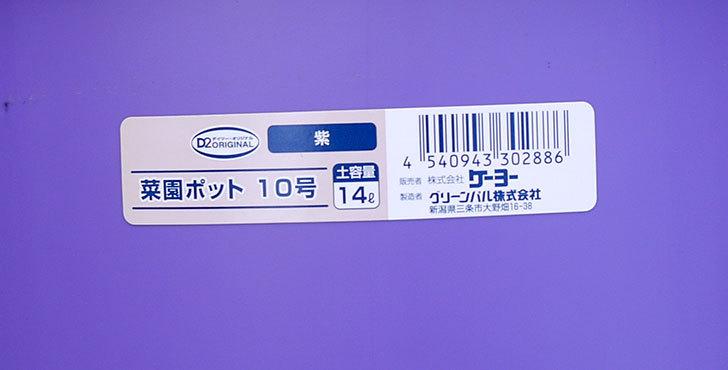 菜園ポッド-10号-紫をケイヨーデイツーで買って来た4.jpg