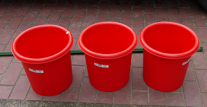 菜園ポッド-10号-赤を3個ケイヨーデイツーで買って来た2.jpg