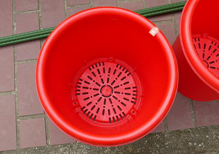 菜園ポッド-10号-赤を3個ケイヨーデイツーで買って来た3.jpg