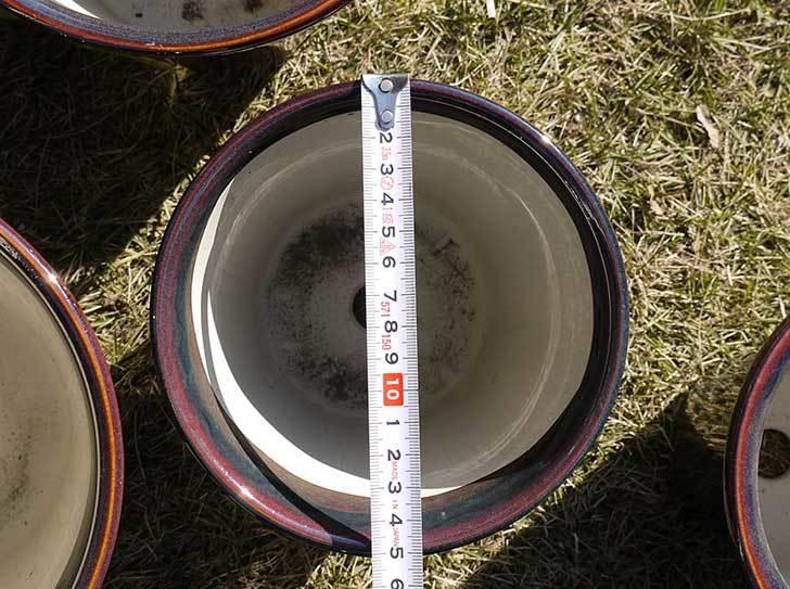 観葉鉢-こげ茶5号を2個、ケイヨーデイツーで買って来た4.jpg