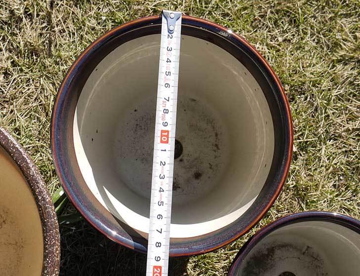 観葉鉢-こげ茶6号を2個、ケイヨーデイツーで買って来た5.jpg