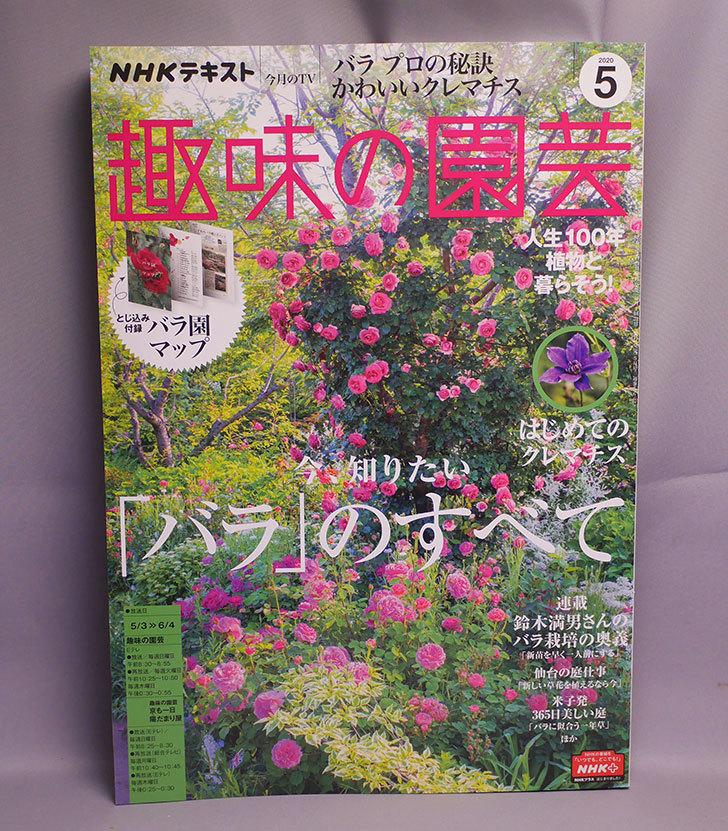 趣味の園芸-2020年-05-月号を買った1.jpg