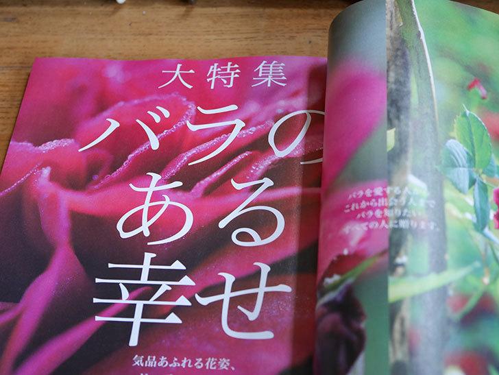 趣味の園芸 2021年 05 月号を買った-003.jpg