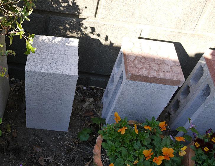 軽量ブロックとプチカラー平板で植木鉢の台を作った2.jpg