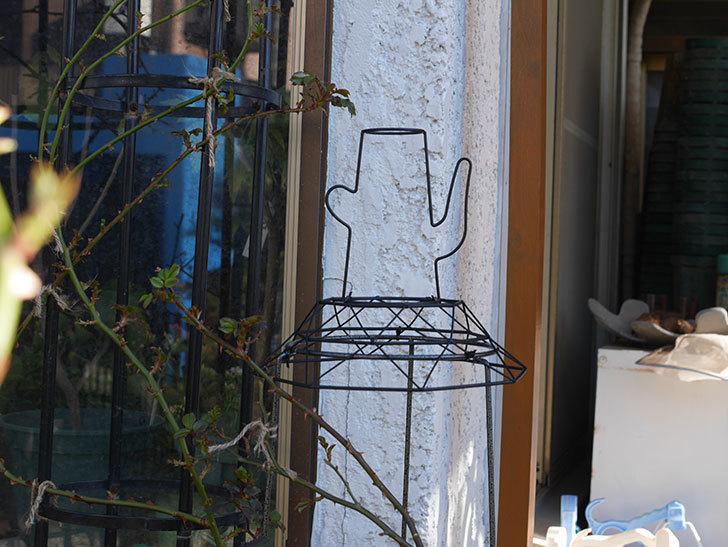 鉢スタンドを連結したオベリスクに飾りを付けた。2021年-004.jpg
