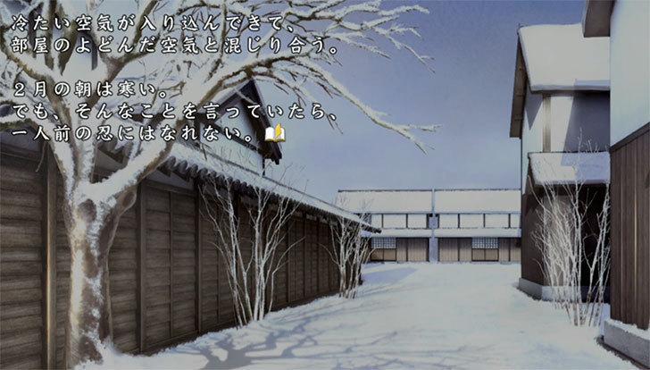 閃乱カグラ-SHINOVI-VERSUS-1-6.jpg