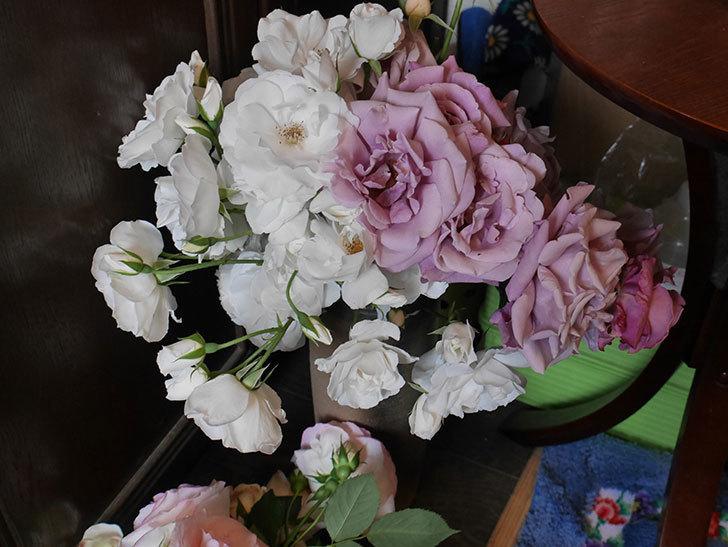 雨の前にバラの花を切ってきた。2019年-12.jpg