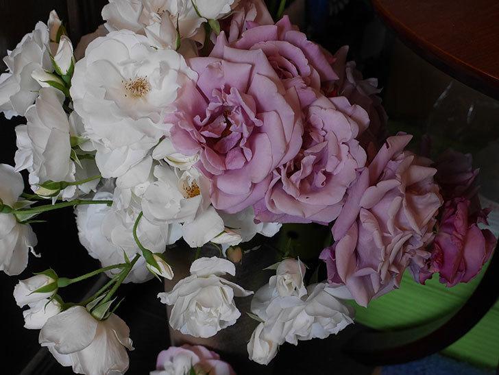 雨の前にバラの花を切ってきた。2019年-13.jpg