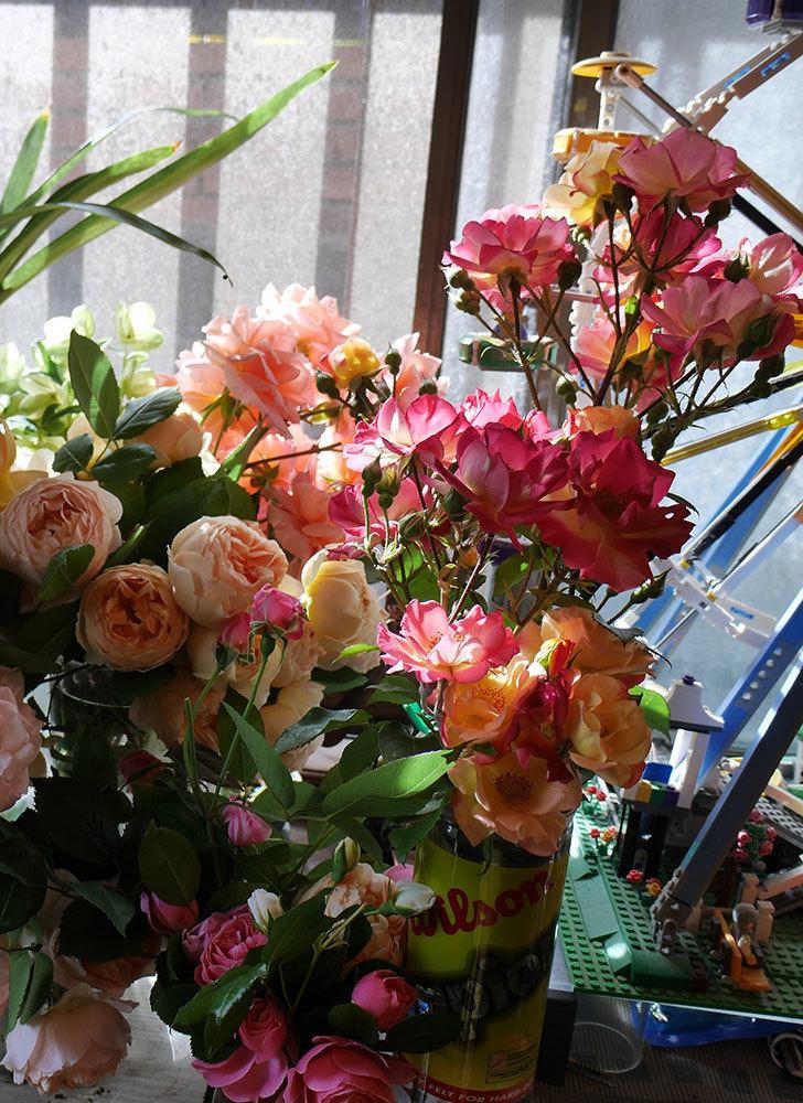 雨の前にバラの花を切ってきた。2019年-3.jpg