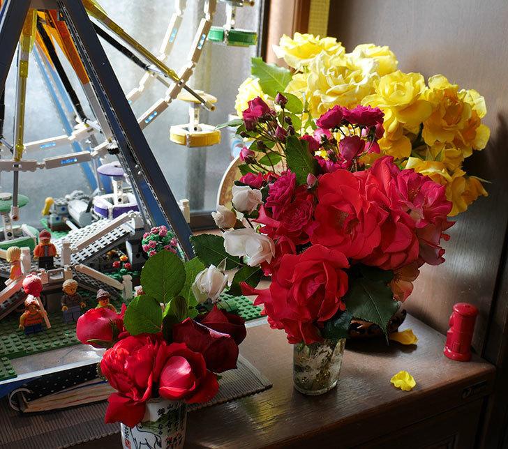 雨の前にバラの花を切ってきた。2019年-4.jpg