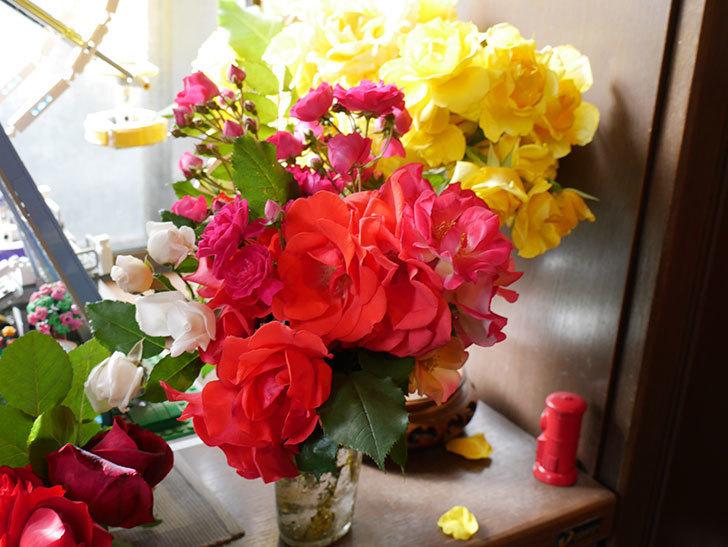 雨の前にバラの花を切ってきた。2019年-6.jpg