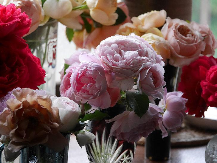 雨予報だったので咲いているバラを切り花にした。2020年-040.jpg