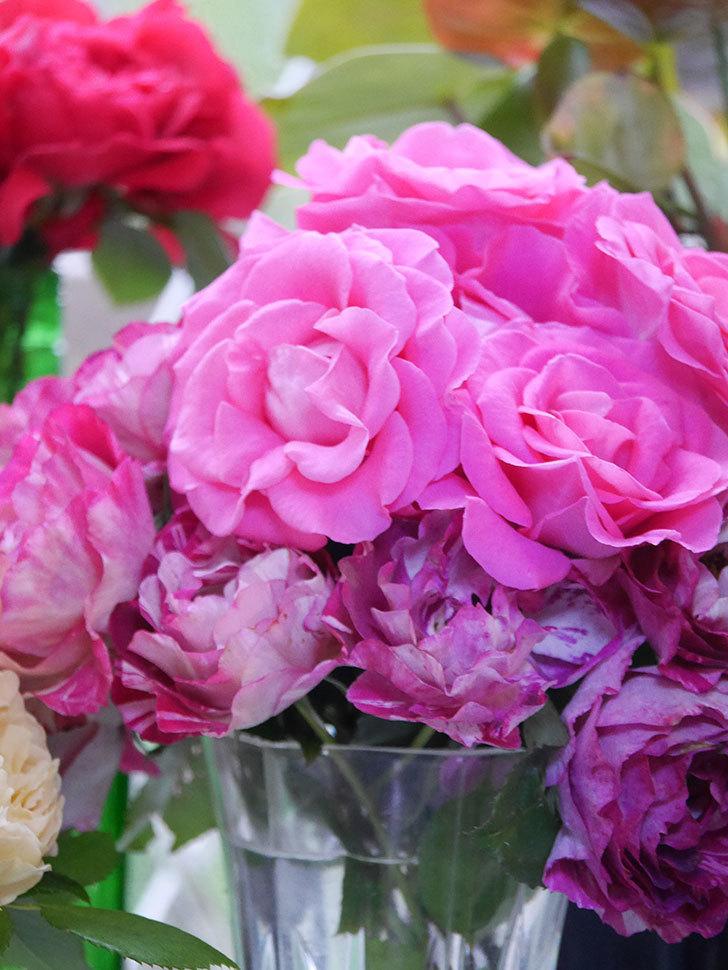雨予報だったので咲いているバラを切り花にした。2020年-049.jpg