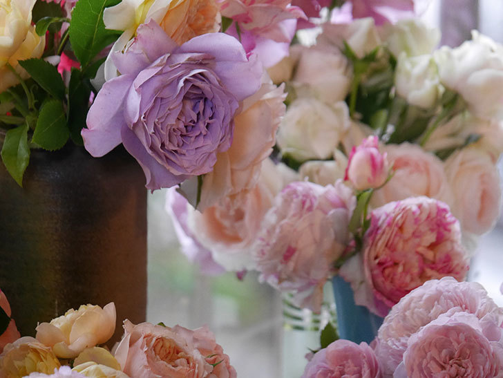 雨予報だったので咲いているバラを切り花にした。2020年-058.jpg