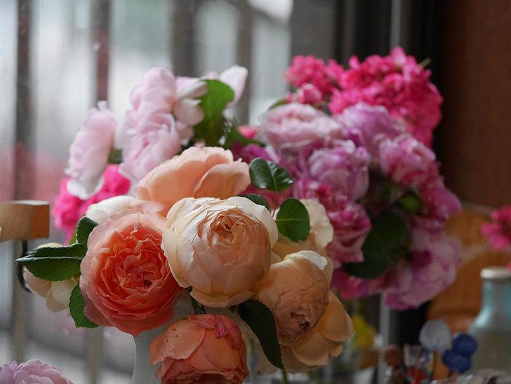 雨予報だったので咲いているバラを切り花にした。2020年-059.jpg