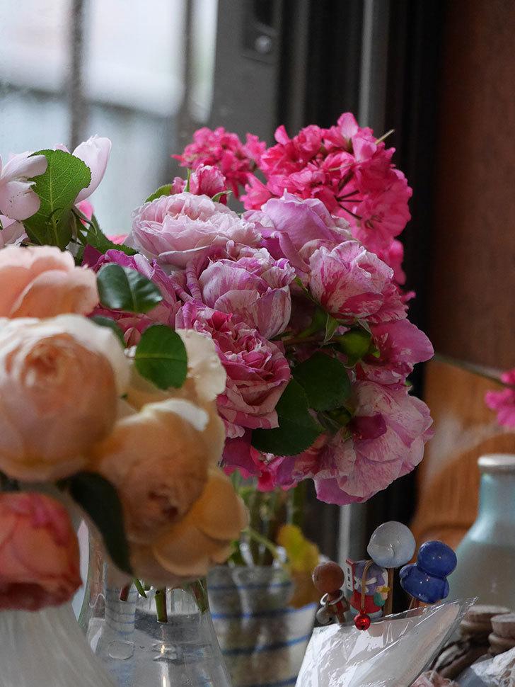 雨予報だったので咲いているバラを切り花にした。2020年-061.jpg